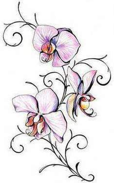 Signification tatouage « Orchid »